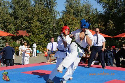 Первенство-по-каратэ-Киокушинкан-ЛУЧШИЙ СТАРТ-2017 10
