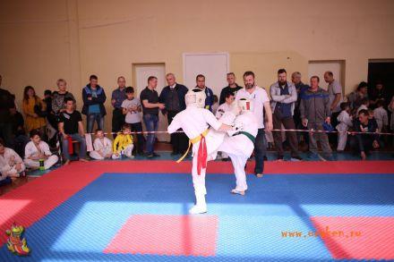 Фестиваль боевых искусств в городе Вожский апрель 2018 59