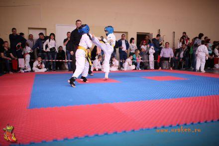 Фестиваль боевых искусств в городе Вожский апрель 2018 16