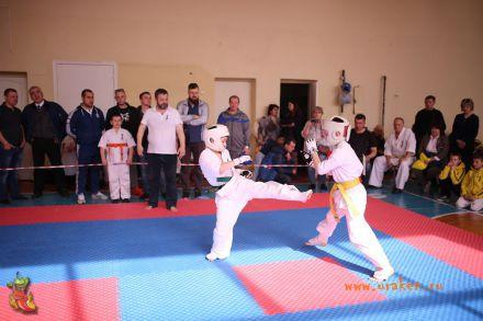 Фестиваль боевых искусств в городе Вожский апрель 2018 61