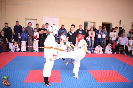 Фестиваль боевых искусств в городе Вожский апрель 2018 9