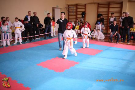 Фестиваль боевых искусств в городе Вожский апрель 2018 41
