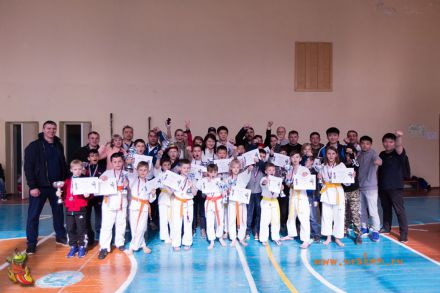 Фестиваль боевых искусств в городе Вожский апрель 2018 76