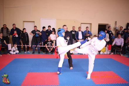 Фестиваль боевых искусств в городе Вожский апрель 2018 29