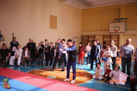 Фестиваль боевых искусств в городе Вожский апрель 2018 69