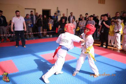 Фестиваль боевых искусств в городе Вожский апрель 2018 54