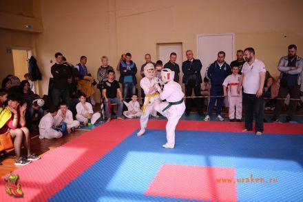 Фестиваль боевых искусств в городе Вожский апрель 2018 64