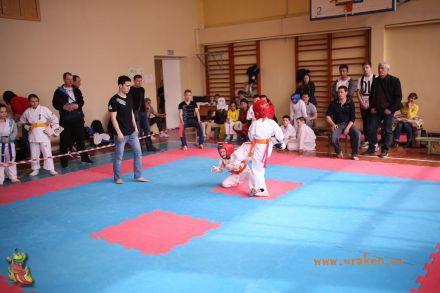 Фестиваль боевых искусств в городе Вожский апрель 2018 39