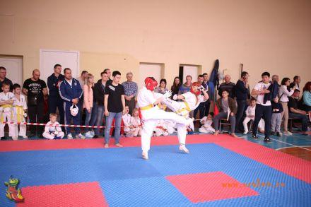 Фестиваль боевых искусств в городе Вожский апрель 2018 33