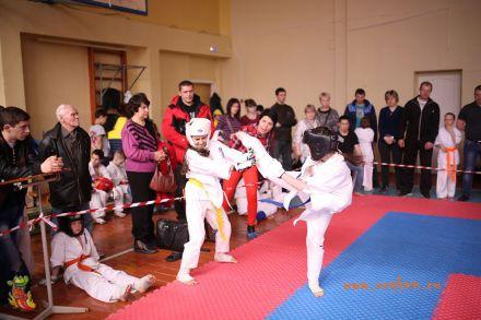Фестиваль боевых искусств в городе Вожский апрель 2018 49