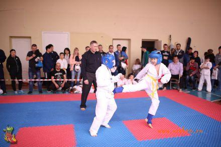 Фестиваль боевых искусств в городе Вожский апрель 2018 30