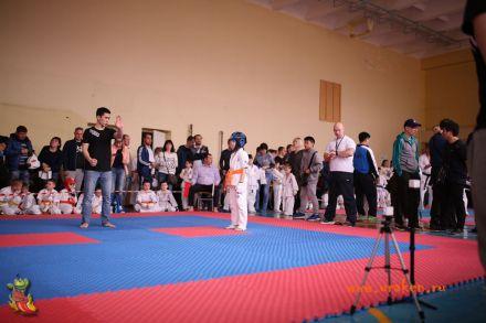 Фестиваль боевых искусств в городе Вожский апрель 2018 13