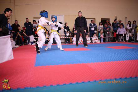 Фестиваль боевых искусств в городе Вожский апрель 2018 17