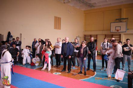 Фестиваль боевых искусств в городе Вожский апрель 2018 50