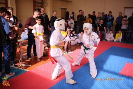 Фестиваль боевых искусств в городе Вожский апрель 2018 65