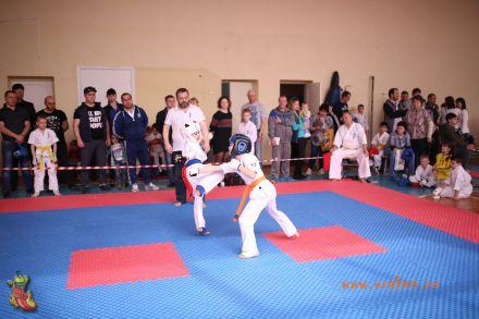 Фестиваль боевых искусств в городе Вожский апрель 2018 44