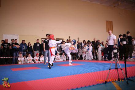 Фестиваль боевых искусств в городе Вожский апрель 2018 14