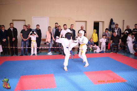 Фестиваль боевых искусств в городе Вожский апрель 2018 45