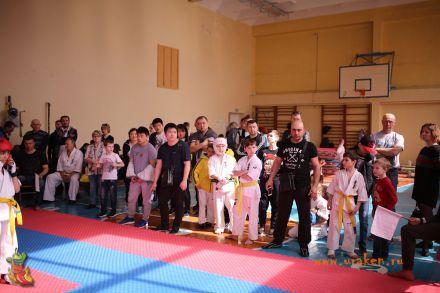 Фестиваль боевых искусств в городе Вожский апрель 2018 56