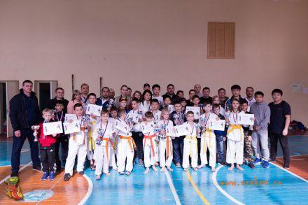 Фестиваль боевых искусств в городе Вожский апрель 2018 75