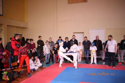 Фестиваль боевых искусств в городе Вожский апрель 2018 47