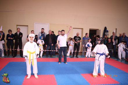 Фестиваль боевых искусств в городе Вожский апрель 2018 51