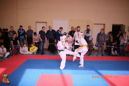 Фестиваль боевых искусств в городе Вожский апрель 2018 67