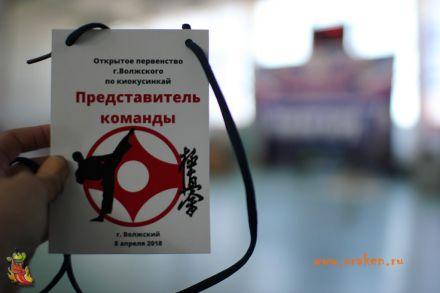 Открытое Первенство Волжского по киокусинкай 8 апреля 2018 5