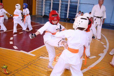 Кю-тест экзамен на пояс Волгоградской федерации шинкиокушин каратэ 12 мая 2018 49