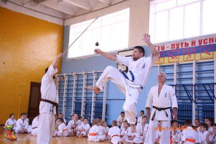 Кю-тест экзамен на пояс Волгоградской федерации шинкиокушин каратэ 12 мая 2018 42