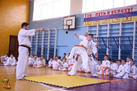 Кю-тест экзамен на пояс Волгоградской федерации шинкиокушин каратэ 12 мая 2018 5