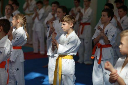 Мастер-класс в Федерации Киокушинкай Волгоградской области март 2020 40