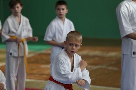 Мастер-класс в Федерации Киокушинкай Волгоградской области март 2020 53