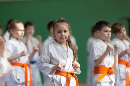 Мастер-класс в Федерации Киокушинкай Волгоградской области март 2020 64