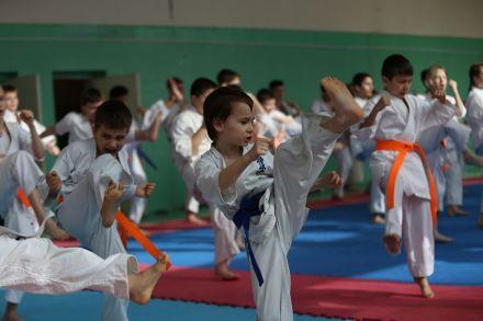 Мастер-класс в Федерации Киокушинкай Волгоградской области март 2020 65