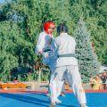 Спортивный клуб каратэ Киокушинкай УРАКЕН-Лучший старт 17