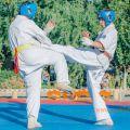 Спортивный клуб каратэ Киокушинкай УРАКЕН-Лучший старт 14