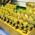 Открытый Кубок Волгоградской области по киокусинкай Кубок Поволжья посвященный памяти Анохина urakenru 21