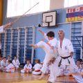 Кю-тест экзамен на пояс Волгоградской федерации шинкиокушин каратэ 12 мая 2018 27