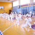 Кю-тест экзамен на пояс Волгоградской федерации шинкиокушин каратэ 12 мая 2018 45