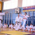 Кю-тест экзамен на пояс Волгоградской федерации шинкиокушин каратэ 12 мая 2018 3
