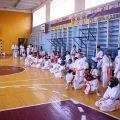Кю-тест экзамен на пояс Волгоградской федерации шинкиокушин каратэ 12 мая 2018 48