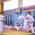 Кю-тест экзамен на пояс Волгоградской федерации шинкиокушин каратэ 12 мая 2018 38