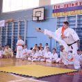 Кю-тест экзамен на пояс Волгоградской федерации шинкиокушин каратэ 12 мая 2018 10