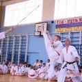 Кю-тест экзамен на пояс Волгоградской федерации шинкиокушин каратэ 12 мая 2018 19