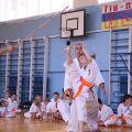 Кю-тест экзамен на пояс Волгоградской федерации шинкиокушин каратэ 12 мая 2018 31