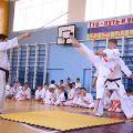 Кю-тест экзамен на пояс Волгоградской федерации шинкиокушин каратэ 12 мая 2018 4