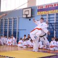 Кю-тест экзамен на пояс Волгоградской федерации шинкиокушин каратэ 12 мая 2018 14