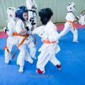 Боевая тренировка киокусинкай в Лицее 9 города Волгограда 11