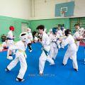 Боевая тренировка киокусинкай в Лицее 9 города Волгограда 23